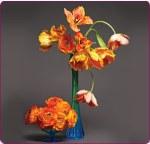 via flower Archives